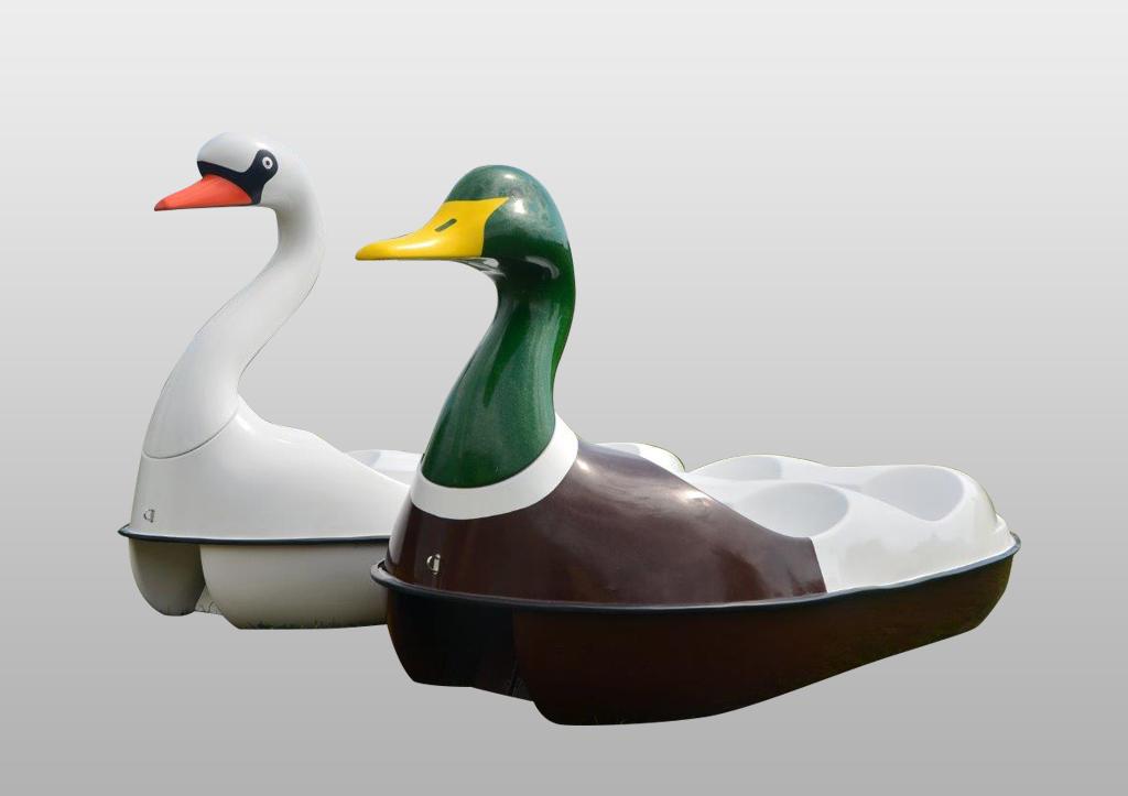 Rower wodny model Łabędź i Kaczka w wersji 4 osobowej